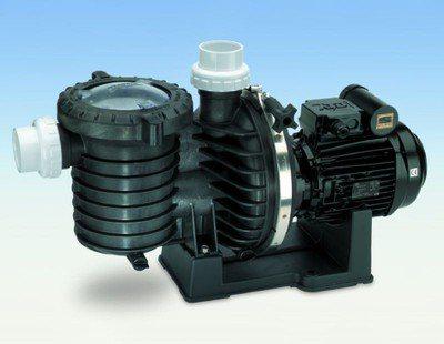 5P6R STA-RITE Kunststoffpumpe, die zuverlässige Schwimmbadpumpe